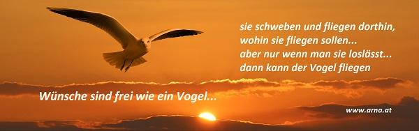 wünsche_sind_wie ein vogel